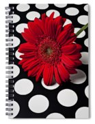 Red Mum With White Spots Spiral Notebook