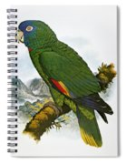 Red-necked Amazon Parrot Spiral Notebook