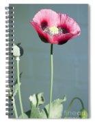 Red Opium Poppy Spiral Notebook