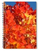 Red Orange Yellow Autumn Leaves Art Prints Vivid Bright Spiral Notebook
