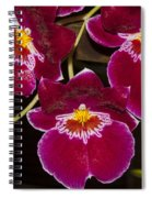 Red Orchids Spiral Notebook