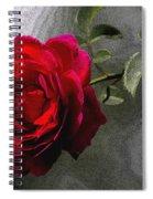Red Paris Rose Spiral Notebook