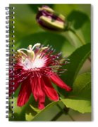 Red Passion Flower Spiral Notebook