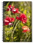 Red Poppies Spiral Notebook