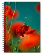 Red Poppy Flowers 05 Spiral Notebook