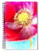 Red Poppy On Blue Spiral Notebook