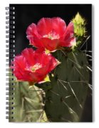 Red Prickly Pear Cactus  Spiral Notebook