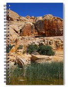 Red Rock Canyon The Tank Spiral Notebook