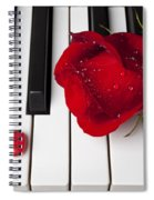 Red Rose And Candy Heart Spiral Notebook