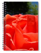 Red Rose Flower Bright Colorful Vivid Red Floral Rose Spiral Notebook