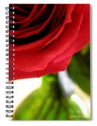 Red Rose In Glass Vase Spiral Notebook
