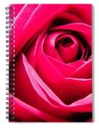 Red Rose Macro Spiral Notebook