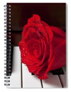 Red Rose On Piano Spiral Notebook