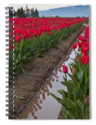 Red Rows Spiral Notebook