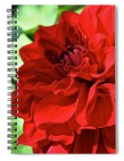 Red Ruby Dahlia Spiral Notebook