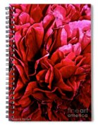Red Ruffles Spiral Notebook
