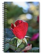 Red Saturated Spiral Notebook