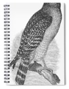 Red-shouldered Hawk, 1890 Spiral Notebook