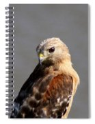 Red-shouldered Spiral Notebook