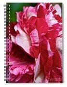 Red Speckled Rose Spiral Notebook