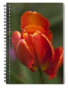 Red Spring Blooming Tulip Spiral Notebook