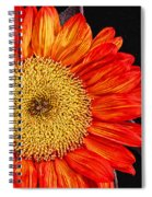 Red Sunflower II  Spiral Notebook