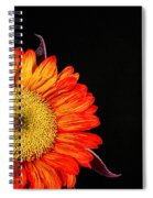 Red Sunflower IIi Spiral Notebook