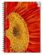 Red Sunflower V Spiral Notebook