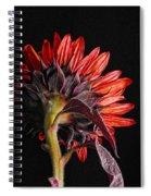 Red Sunflower X Spiral Notebook