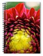 Red Sunrise Dahlia Spiral Notebook