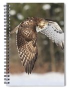 Red Tailed Take-off Spiral Notebook