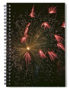 Red Tails Spiral Notebook