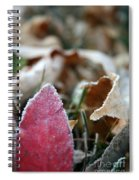Red Thumbs Up Spiral Notebook