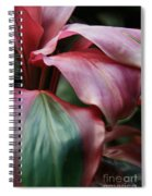Red Ti - Cordyline Terminalis Spiral Notebook