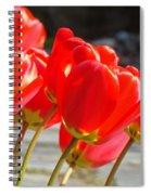 Red Tulip Flowers Art Prints Spring Florals Spiral Notebook