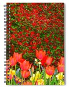 Red Tulip Flowers Spiral Notebook