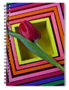 Red Tulip In Box Spiral Notebook