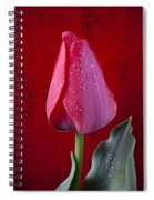 Red Tulip With Dew Spiral Notebook
