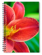 Red Volunteer Spiral Notebook