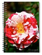 Red White And Yellow Spiral Notebook