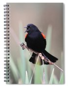 Red-winged Blackbird - Are You Listening Spiral Notebook