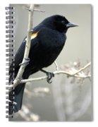 Red-winged Blackbird Agelaius Spiral Notebook