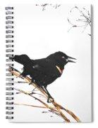 Red Winged Blackbird Spiral Notebook