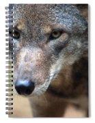 Red Wolf Closeup Spiral Notebook