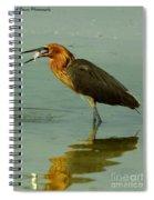 Reddish Egret Caught A Fish Spiral Notebook