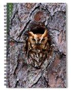 Reddish Screech Owl Spiral Notebook