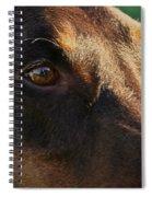 Redman Spiral Notebook