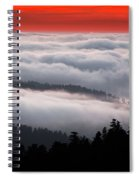 Redwood Clouds Spiral Notebook
