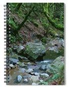 Redwood Creek Art Spiral Notebook