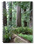 Redwood National Park, California Spiral Notebook